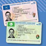 Irish Driving Licence