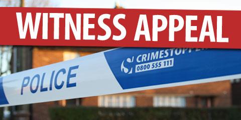 witness-appeal-480