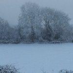 Dusk snow