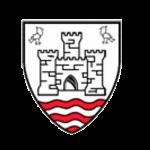 carrickfergus rugby club